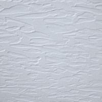 Bourne Textured Ceilings