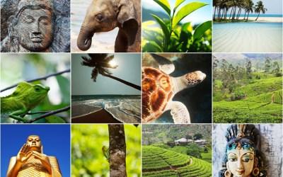 Safari adventures on the breath-taking Island of Sri Lanka