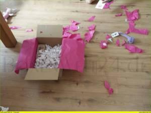 Luckypetbox Boxenwelt24.de