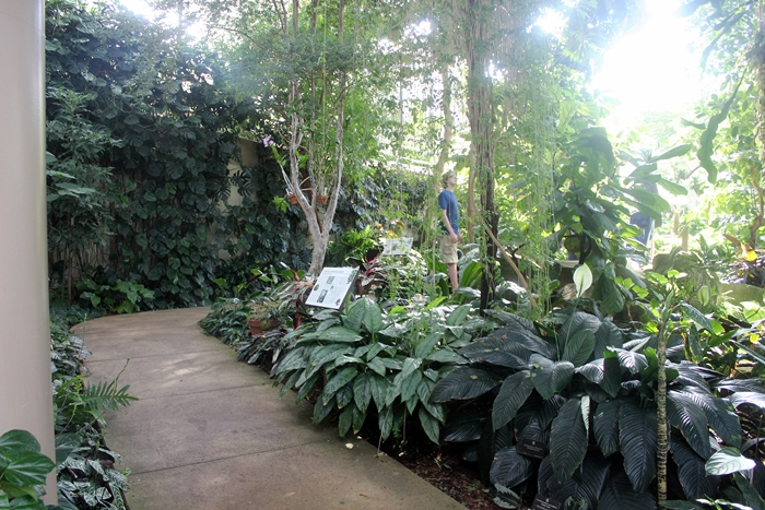 inside at the Botanical Garden