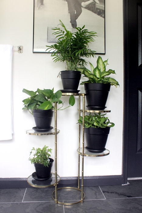 bathplants03s