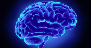 blue brain featured image