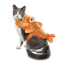 22 Best Cat Costumes for Halloween 2017 - Hilarious ...