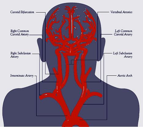 BrainMind