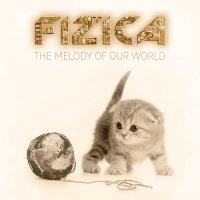 """FIZICA """"The Melody of Our World"""""""