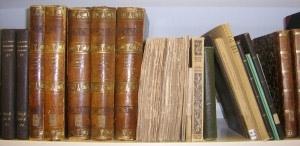 bibliotek-reoludsnit-vartov-300x146