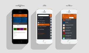 Showroom Profile: Login Screen: Mobile App UX, UI Design