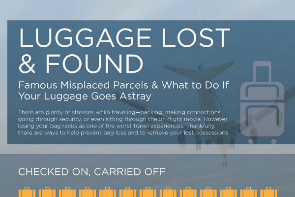 23 Notable Lost Luggage Statistics - BrandonGaille