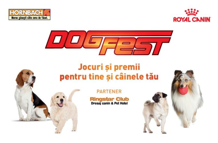 DogFest 2017_1
