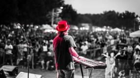 Fests, Fests & More Fests