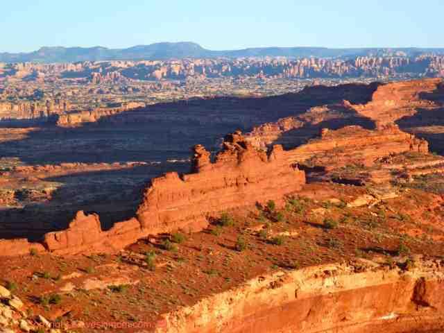 canyonlands maze white rim