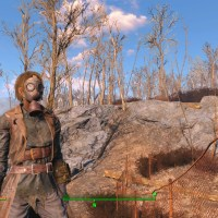 Fallout 4 Beats The Witcher for DICE GOTY, but That's Not What Matters