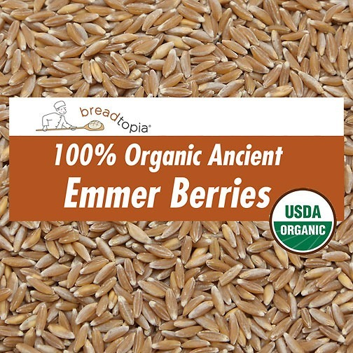Wholesale Manufacturers In Usa Organic Emmer Wheat Berries Breadtopia