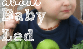 The Comprehensive Guide To Baby Led Weaning
