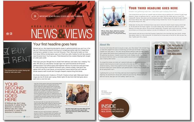 News  Views Newsletter Template