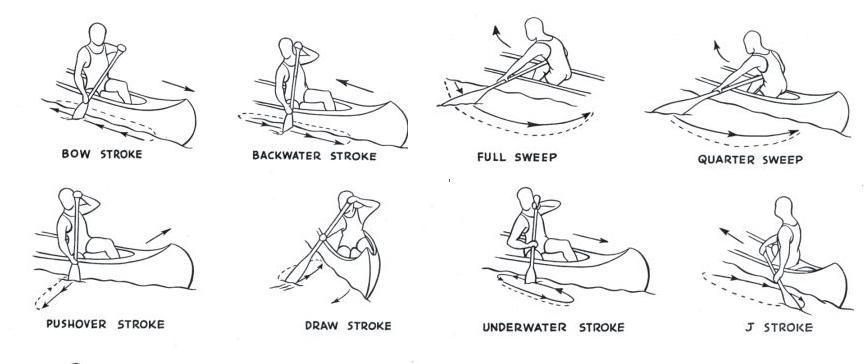 kayak diagram