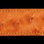 ostrich-belts