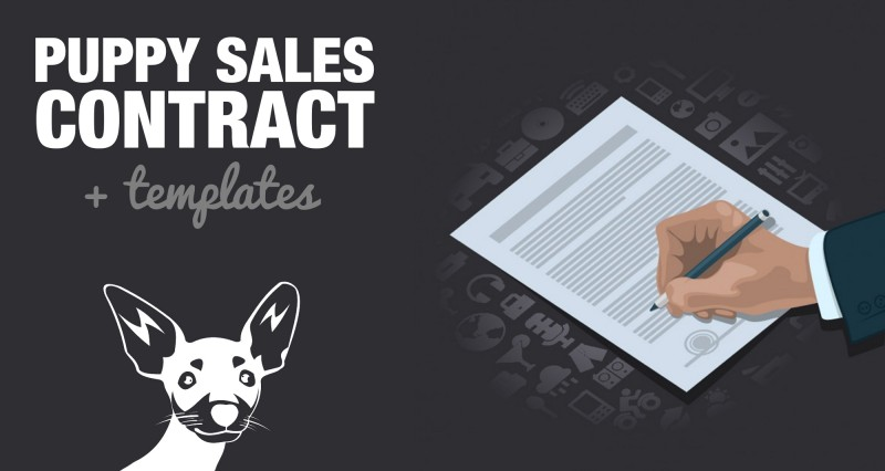 Free Puppy Sales Contract Template  Word/DOC Sample