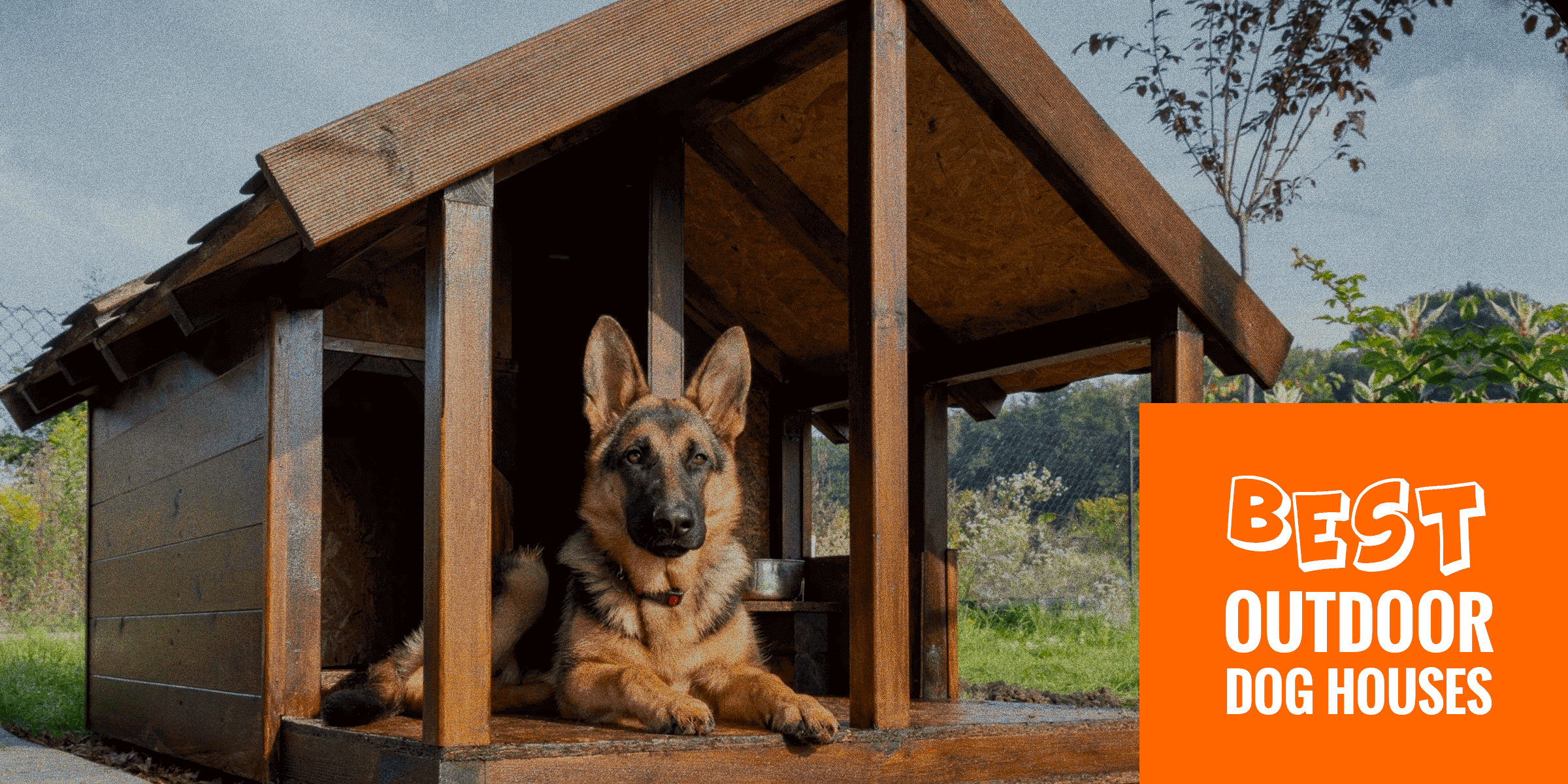 Dog House Top 6 Best Outdoor Dog Houses Wired Wooden Foldable