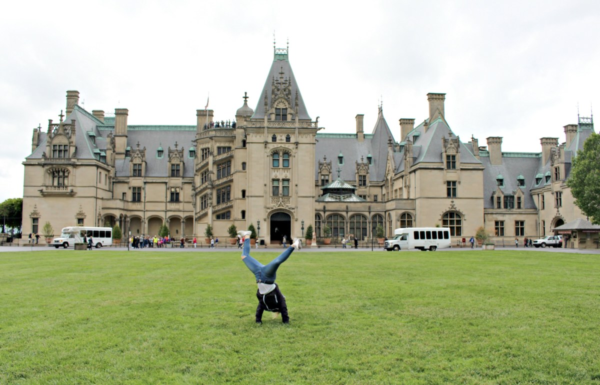 the biltmore, asheville, nc