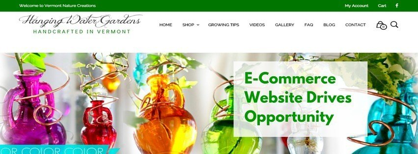 An e-Commerce Website Drives Opportunity for a Local Business