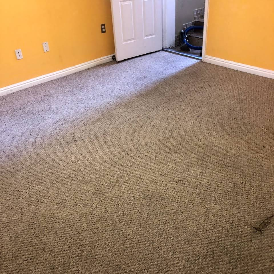 Carpet Cleaning Carpet Cleaner Company In Ogden Ut