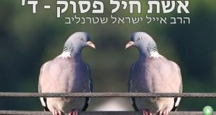 אשת חיל פסוק ד' –  הרב אייל ישראל שטרנליב