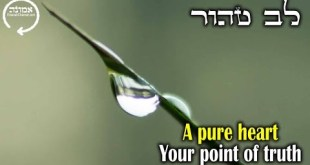 A pure heart | Your point of truth