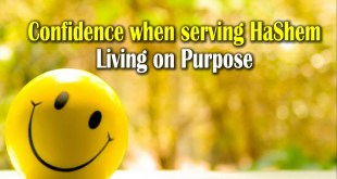 Confidence when serving HaShem | Living on Purpose