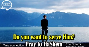 Do you want to serve Him? | Pray to Hashem