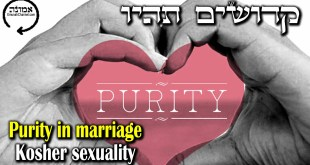 Purity in marriage | Kosher sexuality