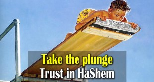 Take the plunge | Trust in Hashem