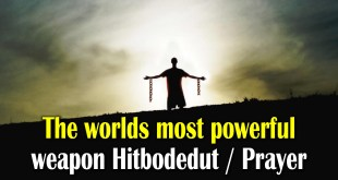 The worlds most powerful weapon Hitbodedut / Personal Prayer | Likutey Moharan Pt2 25