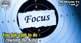 You gotta job to do  | Crowning the king