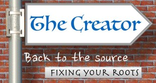 Back to the source | Fixing your roots