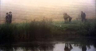 מעשה מרב ובן יחיד – גיא גרידיש