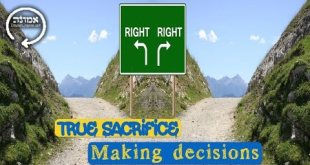 True Sacrifice | Making decisions