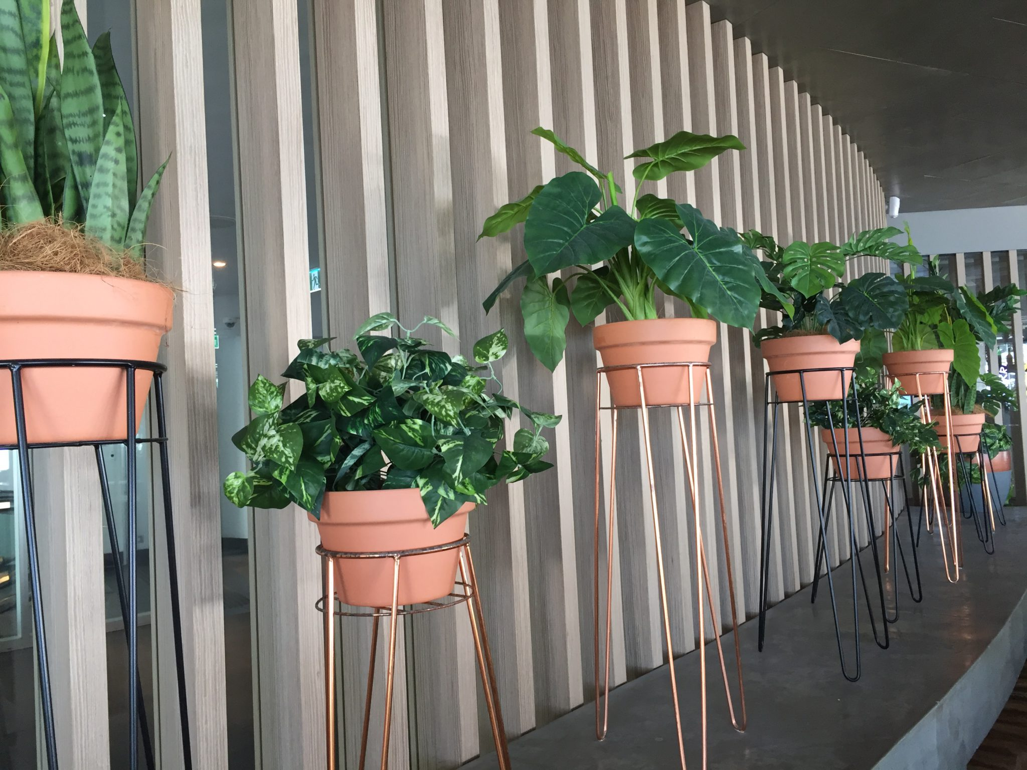 Artificial Plants Hire Artificial Shrubs
