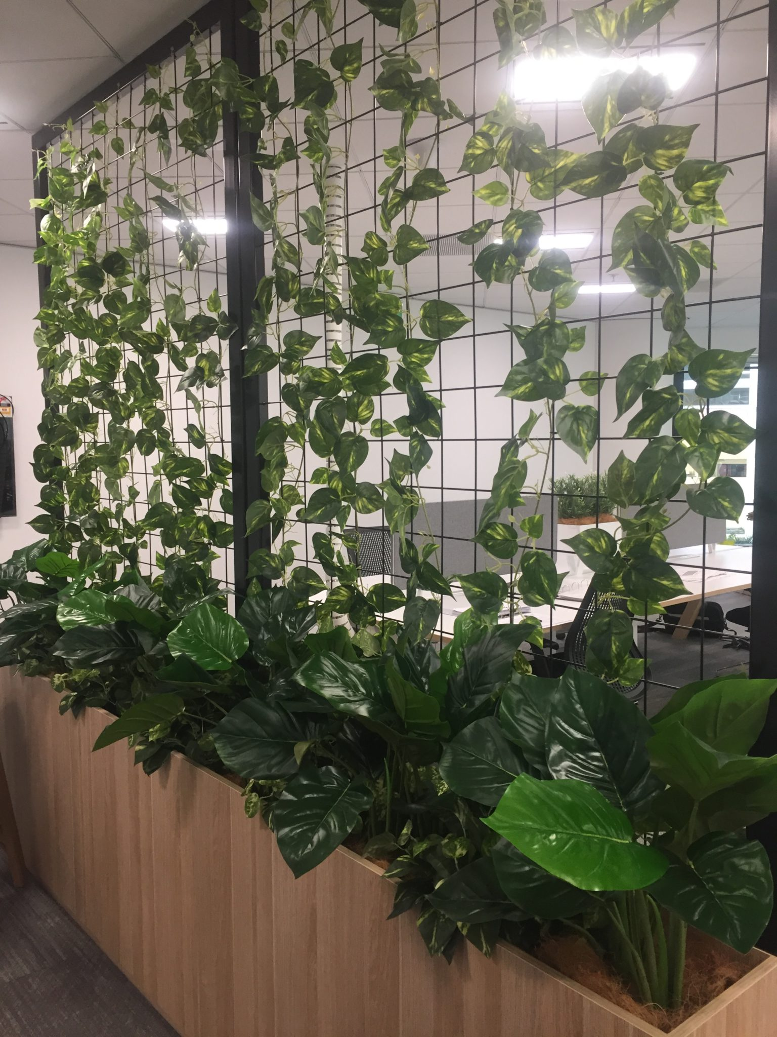 Artificial Plants Hire Artificial Plants