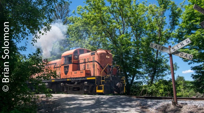 The Alco of Eagle Bridge-June 10, 2016-Which of these eight photos is your favorite?