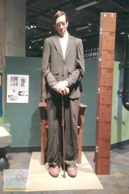 Go Back > Images For > Tallest Man In The World