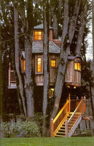 treehousepic