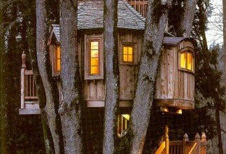treehousepic