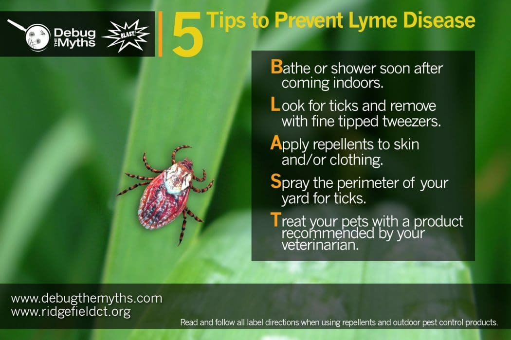 the features of lyme disease Cases of lyme disease appear to be rising but there are still many unanswered  questions about the condition, its diagnosis and the available.