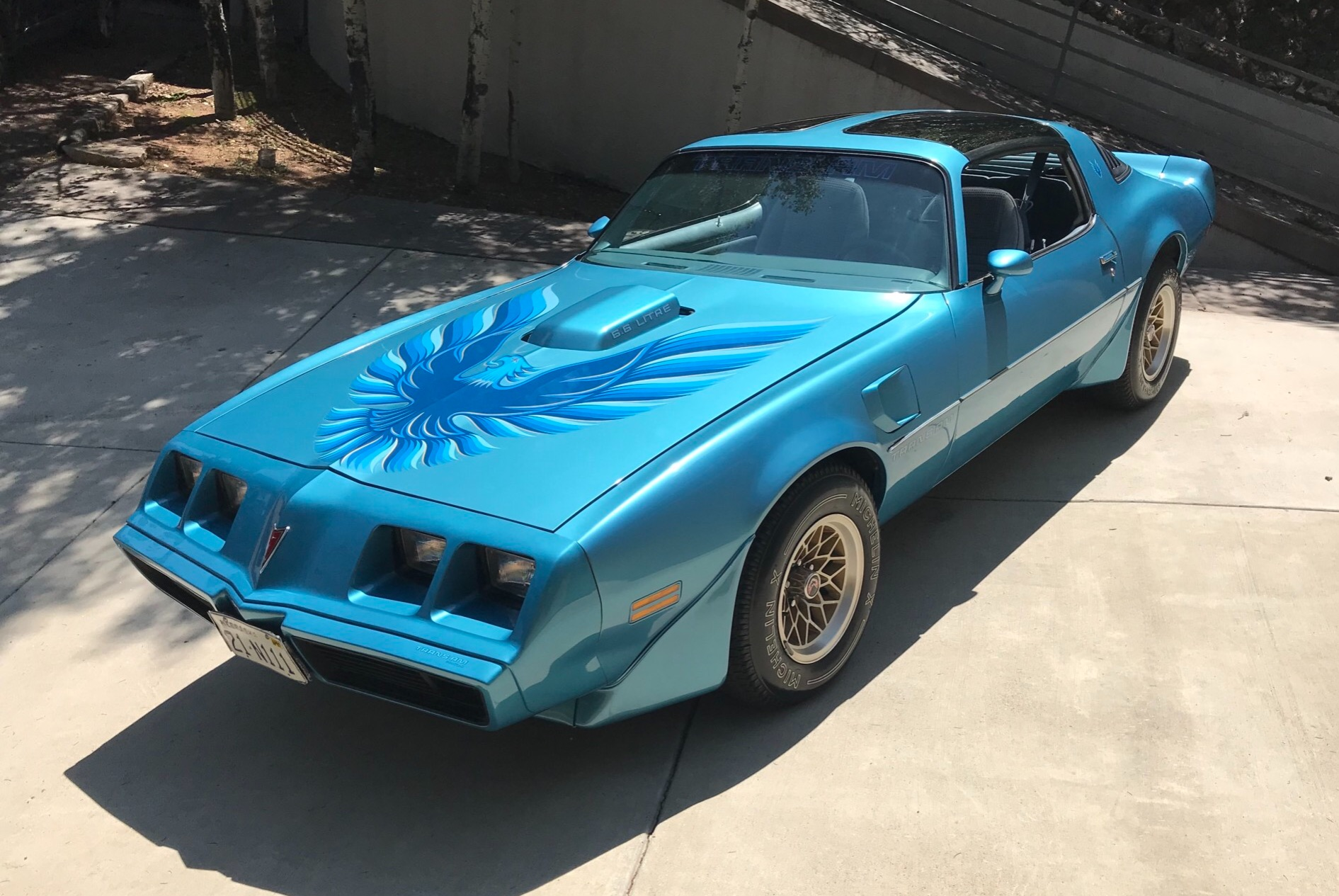 1979 Trans Am Picture 33k Mile 1979 Pontiac Trans Am