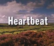 Heartbeat Tour