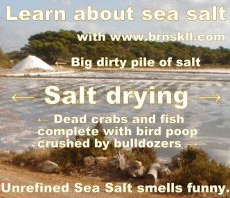 Learn about Unrefined Sea Salt with www.brnskll.com