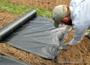 Bryan stapling geotextile