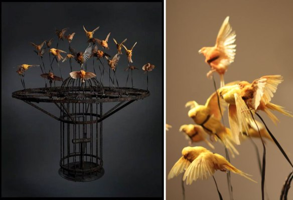 Left: Polly Morgan, Systemic Inflammation, 2010; Taxidermy and steel, 51 1/8 x 44 1/2 x 44 1/2 in.; Private Collection, London; Photography by Tessa Angus, Right: Systemic Inflammation (detail), Photograph by Laura Hoffman