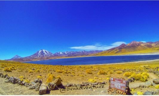 Incrível - Lagunas Altiplânicas - Deserto do Atacama
